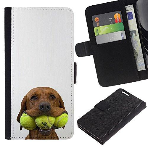 OMEGA Case / Apple Iphone 6 PLUS 5.5 / tennis golden retriever pet dog / Cuero PU Delgado caso Billetera cubierta Shell Armor Funda Case Cover Wallet Credit Card