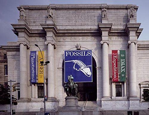 Photo: American Museum of Natural History & Hayden Planetarium, York,NY,Highsmith