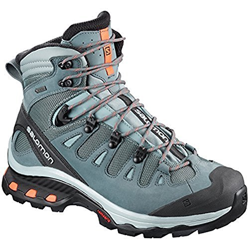 Salomon Women's Quest 4d 3 GTX W High Rise Hiking Boots, 14 Lead / Stormy Weather / Bird of Paradise