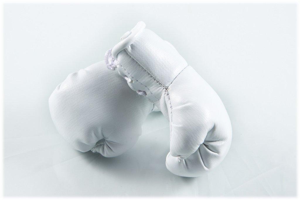 Mini Boxhandschuhe WEIß , 1 Paar (2 Stü ck) Miniboxhandschuhe z. B. fü r Auto-Innenspiegel Sportfanshop24 02340065
