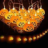 JamBer Halloween Pumpkin Fairy Lights 20LED Pumpkin String Lights 6.9Feet Battery Operated Halloween Lights 3D Halloween Orange Pumpkin Lights for Halloween Party  Decorations,Warm White