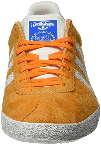 Adidas Gazelle And Mens Trainers Borang / Ftwwht / Borang S74848