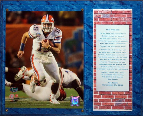 Tim Florida Gators Tebow - Tim Tebow Florida Gators (Promise Speech) 8x10 Photo Stat Plaque - Blue