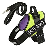 East-Bird No Pull Dog Harness, Breathable Adjustable, Free Leash is Included Small Medium Big Dogs, Best Choice Training Walking Service Dog Green L