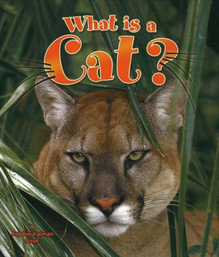 What Is a Cat? (The Science of Living Things)