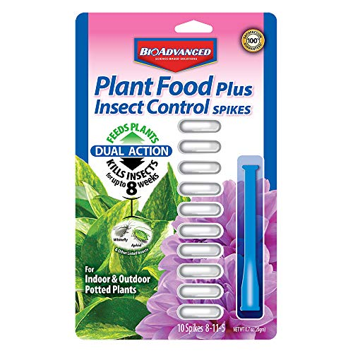 (Bayer Advanced 701710 2-in-1 Insect Control Plus Fertilizer Plant Spikes, 10-Spikes)