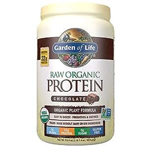 Garden Of Life Organic Vegan Protein Powder With Vitamins And Probiotics Raw