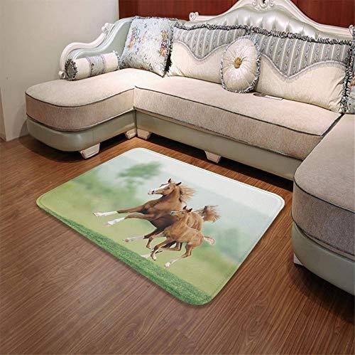 YOLIYANA Non-Slip Mat,Horse Decor,for Bathroom Kitchen Bedroom,55.12