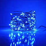 Hometown Evolution, Inc. Fairy Lights- 33 Foot Plug In 100 Micro LED on Copper Wire - Blue