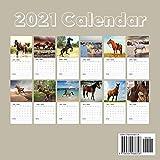 Arabians 2021 Wall Calendar: Arabian Horses