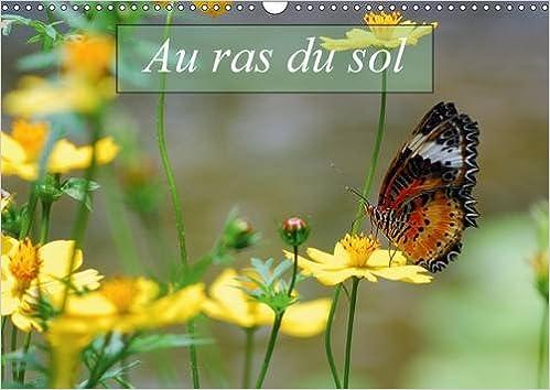 En ligne Au ras du sol : Macrophotographies d'insectes. Calendrier mural A3 horizontal 2016 pdf ebook