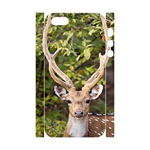 3D Case For Ipod Touch 5 Cover Cases Magnificent Stag, Undoubtedly One of the Most Beautiful Deer, Case For Ipod Touch 5 Cover Cases Deer, [White]