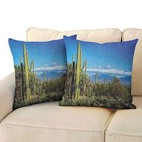 RenteriaDecor Desert,Couple Pillowcase Wide View of The Tucson Countryside with Cacti Rural Wild Landscape Arizona Phoenix 16