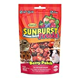 Higgins Sunburst Gourmet Natural Treats - Berry