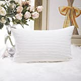 HOME BRILLIANT Striped Velvet Throw Pillow Covers 1 Pack
