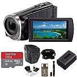 Sony ASONHDRCX455BK2