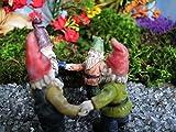 Cheap Miniature Fairy Garden Gnome Friends
