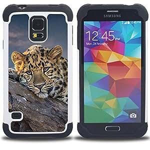 - African Cheetah Big Cat/ H??brido 3in1 Deluxe Impreso duro Soft Alto Impacto caja de la armadura Defender - SHIMIN CAO - For Samsung Galaxy S5 I9600 G9009 G9008V