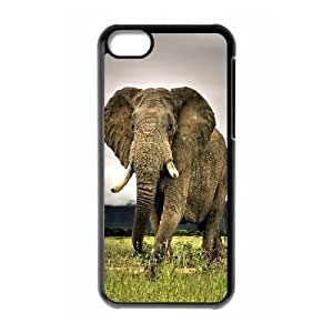 XiFu*Meiiphone 5/5s Case, Cute Cheap Elephant Case for iphone 5/5sXiFu*Mei