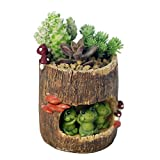 Adarl DIY Mini Creative Flower Pot Flower&Fruits Plants Seeds Gardening Pots Planters&Container Accessories Resin Frogs Pots Small