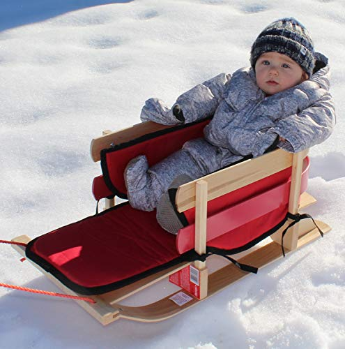 Buy sled for toddlers
