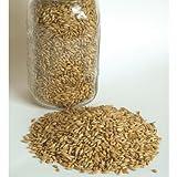 David's Garden Seeds Grain Crop Barley Robust PO2720 (Brown) Organic One Pound Package