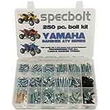 250pc Specbolt Yamaha Banshee Bolt Kit for Maintenance & Restoration OEM Spec Fasteners ATV Quad
