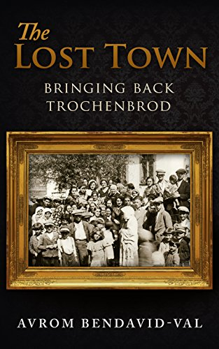 The Lost Town: Bringing Back Trochenbrod for sale  Delivered anywhere in USA