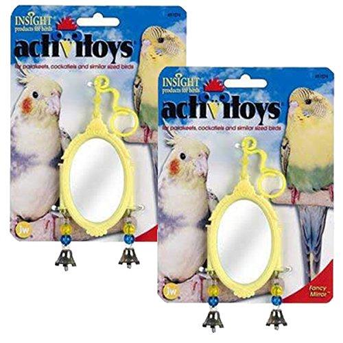 Insight ActiviToys Fancy Mirror Bird Toy