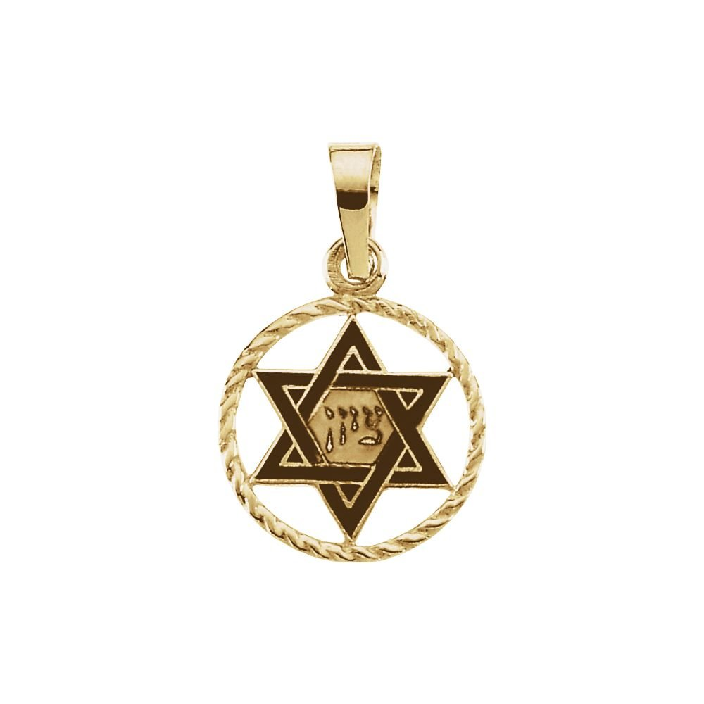 Jewels By Lux 14K Yellow Gold 14x11mm Star of David Pendant