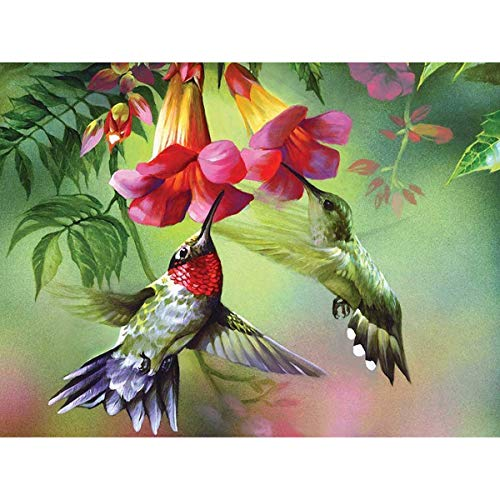 - 5D Diamond Painting Flower & Bird Full Drill by Number Kits for Adults Kids, Ginfonr Craft Rhinestone Paint with Diamonds Set Arts Spring Decorations (12x16inch)
