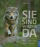Sie sind wieder da: Bär, Luchs und Wolf erleben