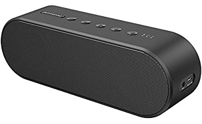 Bluetooth Speaker with DSP Stereo, 20W Wireless Surround Sound Bluetooth 4.2 Portable Speaker, 33-Foot Bluetooth Range & Built-in Mic, Low Harmonic Distortion Deep Bass and Clear Sound for Home