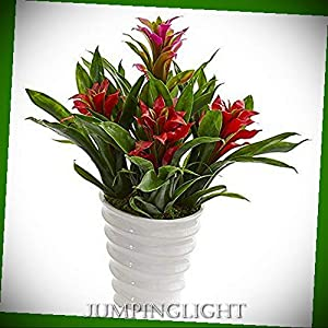 JumpingLight Bromeliad Artificial Plant in White Vase, Red Artificial Flowers Wedding Party Centerpieces Arrangements Bouquets Supplies 74