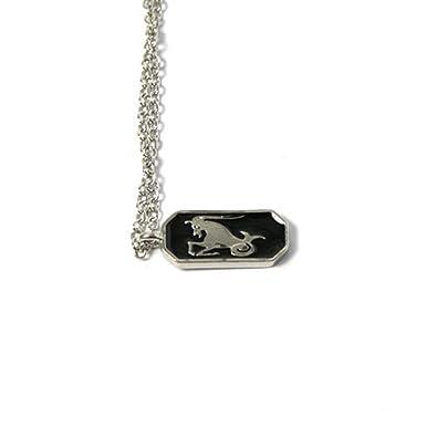 82b3f7f6d83a Collar con colgante de plata horóscopo negro epoxy - signo del zodiaco  Capricornio  Amazon.es  Joyería