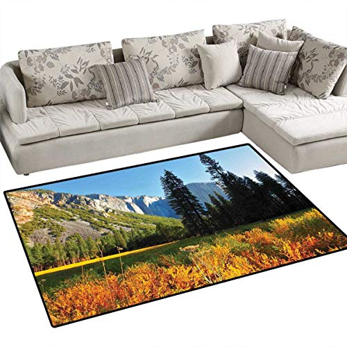 Yosemite Bath Mats for Floors Birds Flight Flies Over Mountains Yosemite National Park Early Fall Season Door Mat Indoors Bathroom Mats Non Slip 55