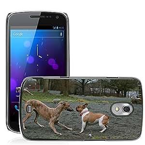 GoGoMobile Slim Protector Hard Shell Cover Case // M00119402 Dogs Bulldog Galgo Animate Play // Samsung Galaxy Nexus GT-i9250 i9250