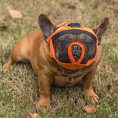 dog muzzle for bulldogs - 8