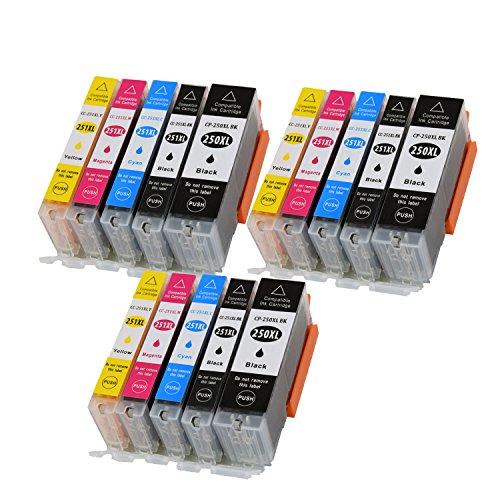 (15 Ink (3BK,3PBK,3C,3M,3Y) TONER4U Replace Compatible for Canon PGI-250 CLI-251 XL/PGI-250XL CLI-251XL Black, Photo Black, Cyan, Magenta, Yellow PGI250 CLI251 PGI/pg 250 CLI/cl 251 pg/cl pg250 c)
