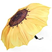 Plemo Automatic Umbrellas,Folding Travel Umbrella Auto Open and Close