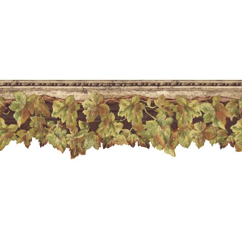 English Ivy Border - Decorate By Color Brown English Ivy Border BC1580714