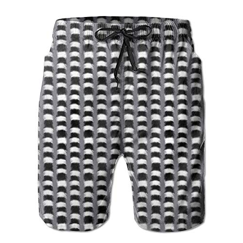 Lemur Tale Fluffy Fury Stripes Men Beach Boardshorts