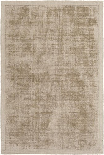 Silky Area Rug, Taupe Contemporary Transitional Soft Tonal Carpet, 5' x 7'6