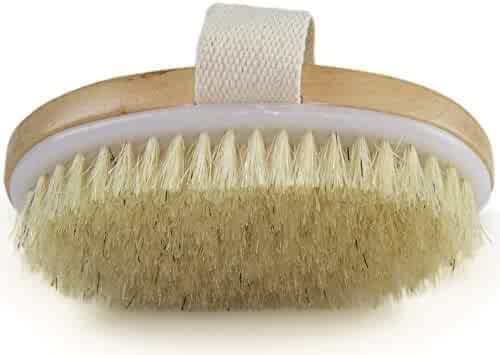 Dry Skin Body Brush - Improves Skin's Health and Beauty - Natural Bristle - Remove Dead Skin and Toxins, Cellulite Treatment, Improves Lymphatic Functions, Exfoliates, Stimulates Blood Circulation
