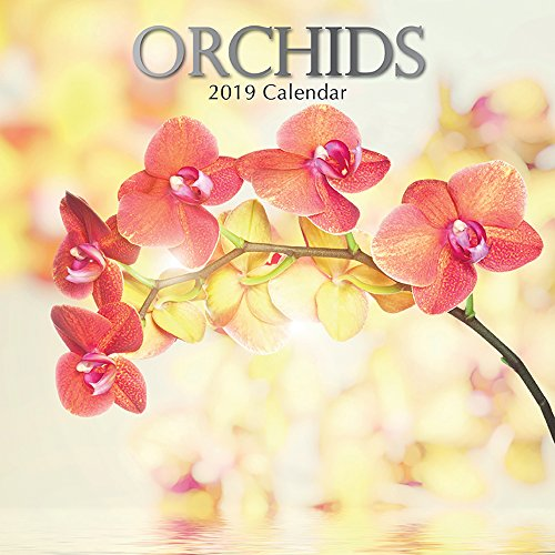 (2019 Wall Calendar - Orchids Calendar, 12 x 12 Inch Monthly View, 16-Month, Blooms and Flowers Theme, Includes 180 Reminder Stickers)