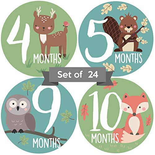 (Baby Monthly Stickers | Gender Neutral Baby Milestone Stickers | Woodland Animal Newborn Stickers | Unisex Stickers for Baby | Baby Girl or Boy Stickers | Newborn Milestone Month Stickers)