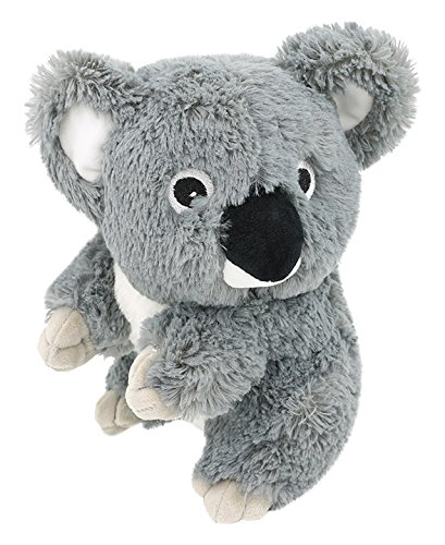 Koala Bear Plush - 5