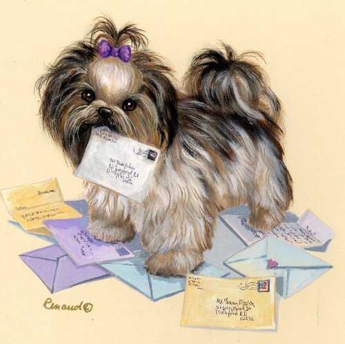 (Shih Tzu Fan Mail-LF)