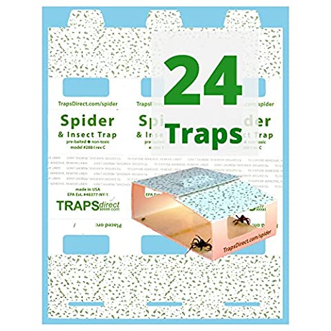 24 Traps Direct Spider & Insect Trap (Spider Trapper)