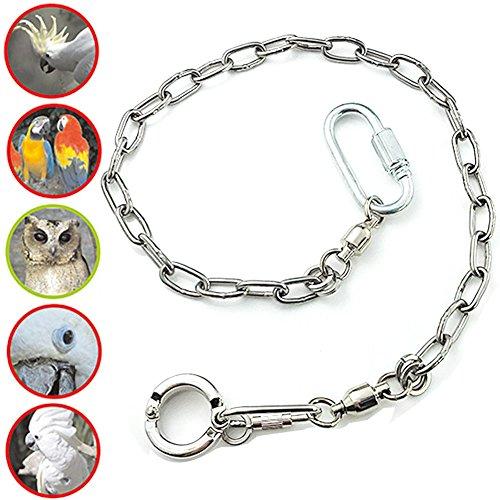 - ebamaz Pet Bird Leash Parrot Foot Chain Stainless Steel 304 Anklet Ring (Model 15, 14.5mm)